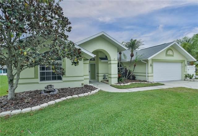 4847 Basswood Street, Land O Lakes, FL 34639 (MLS #T3211053) :: Team Borham at Keller Williams Realty