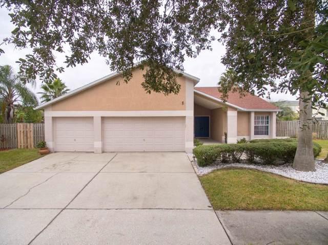 820 Frankford Drive, Brandon, FL 33511 (MLS #T3211060) :: Dalton Wade Real Estate Group