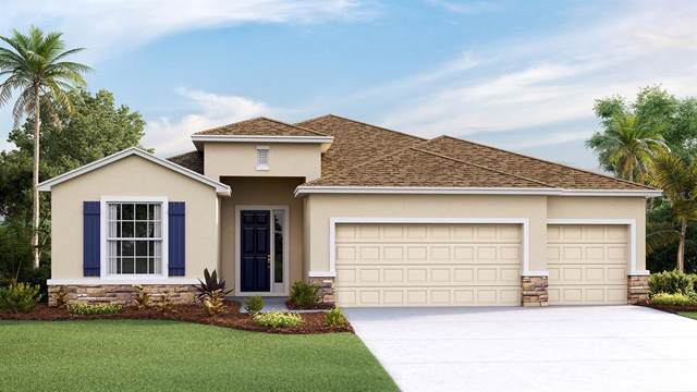 8322 Praise Drive, Tampa, FL 33625 (MLS #T3211073) :: Baird Realty Group