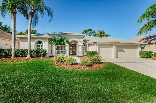 4110 Auston Way, Palm Harbor, FL 34685 (MLS #T3211074) :: Delgado Home Team at Keller Williams