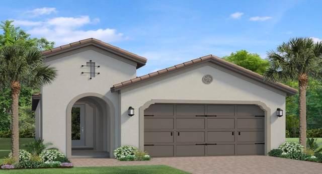 4853 Tramanto Lane, Wesley Chapel, FL 33543 (MLS #T3211091) :: Griffin Group