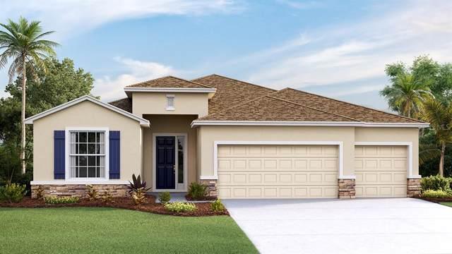 2505 Knight Island Drive, Brandon, FL 33511 (MLS #T3211113) :: Team Bohannon Keller Williams, Tampa Properties