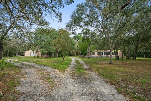 15601 Helen K Drive, Spring Hill, FL 34610 (MLS #T3211138) :: Dalton Wade Real Estate Group