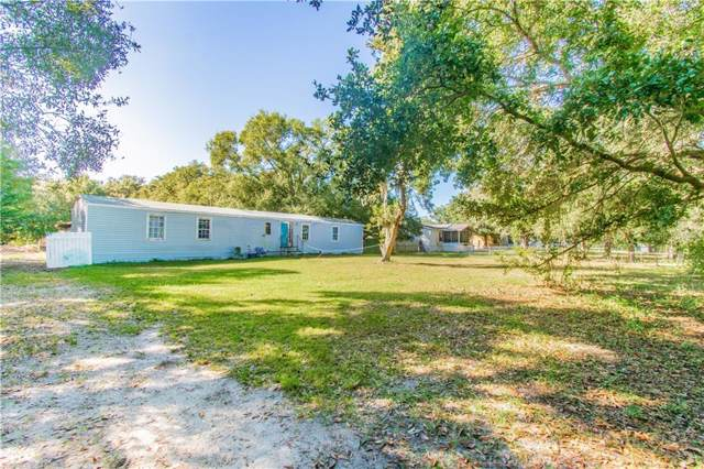12019 Fawn Dale Drive, Riverview, FL 33569 (MLS #T3211196) :: Griffin Group