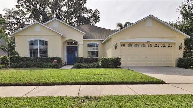 11411 Blue Lilac Avenue, Riverview, FL 33578 (MLS #T3211264) :: Griffin Group