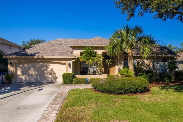 4014 Lithia Ridge Boulevard, Valrico, FL 33596 (MLS #T3211268) :: Lovitch Realty Group, LLC