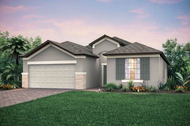 4660 Ballast Crest Cove, Land O Lakes, FL 34638 (MLS #T3211272) :: McConnell and Associates
