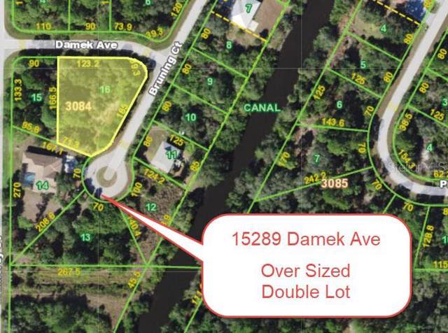 15289 Damek Avenue, Port Charlotte, FL 33953 (MLS #T3211380) :: Delgado Home Team at Keller Williams