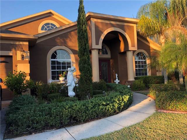 17841 Souter Lane, Land O Lakes, FL 34638 (MLS #T3211398) :: Team Bohannon Keller Williams, Tampa Properties