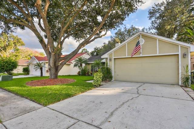 1408 Cloverfield Drive, Brandon, FL 33511 (MLS #T3211424) :: Griffin Group