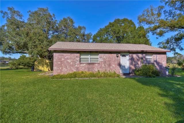 9336 Edison Road, Lithia, FL 33547 (MLS #T3211432) :: RE/MAX Realtec Group