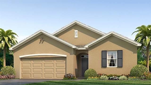 2700 Garden Plum Place, Odessa, FL 33556 (MLS #T3211472) :: Team Bohannon Keller Williams, Tampa Properties