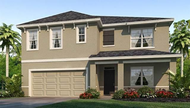 16451 Little Garden Drive, Wimauma, FL 33598 (MLS #T3211488) :: The Duncan Duo Team