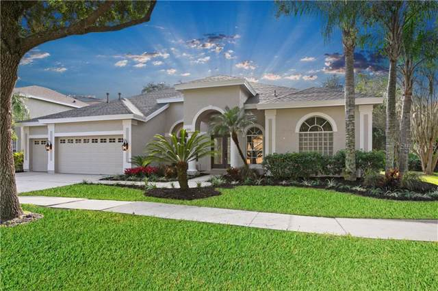 8201 Nature Cove Way, Tampa, FL 33647 (MLS #T3211577) :: Lovitch Realty Group, LLC