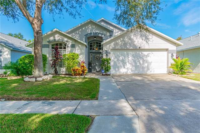 10124 Somersby Drive, Riverview, FL 33578 (MLS #T3211578) :: Charles Rutenberg Realty
