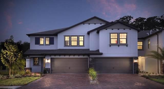 4885 San Martino Drive, Wesley Chapel, FL 33543 (MLS #T3211605) :: Team Borham at Keller Williams Realty