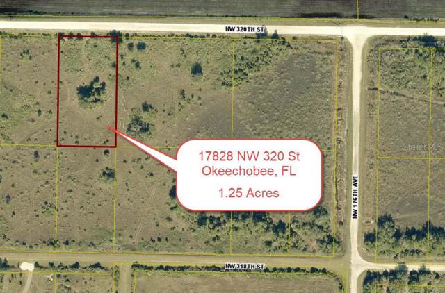 17828 NW 320TH Street, Okeechobee, FL 34972 (MLS #T3211698) :: 54 Realty