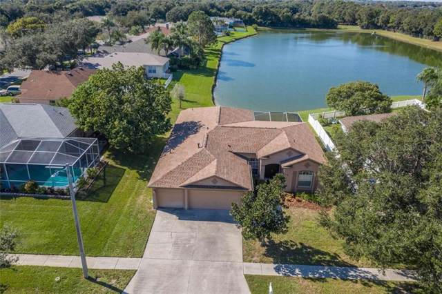 10504 Ashley Oaks Drive, Riverview, FL 33578 (MLS #T3211700) :: Charles Rutenberg Realty