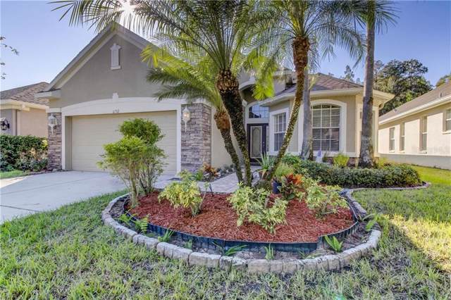 11212 Cavalier Place, Tampa, FL 33626 (MLS #T3211701) :: 54 Realty