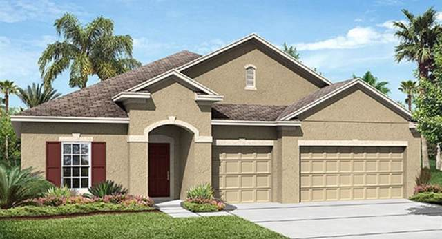 1795 Chatsworth Circle, Saint Cloud, FL 34771 (MLS #T3211757) :: Zarghami Group