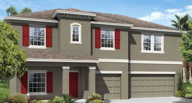 1814 Henley Street, Saint Cloud, FL 34771 (MLS #T3211765) :: Zarghami Group
