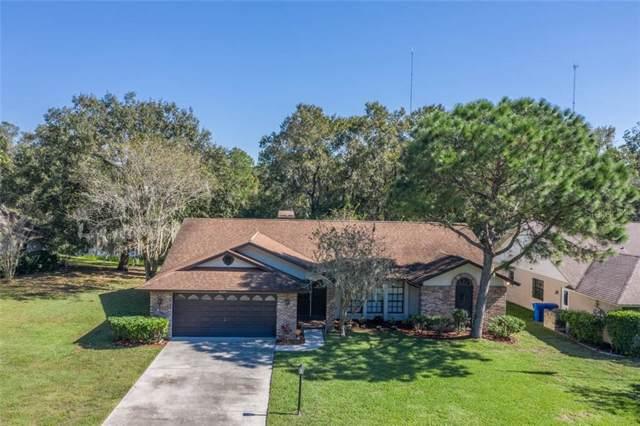 10124 Sedgebrook Drive, Riverview, FL 33569 (MLS #T3211791) :: Griffin Group