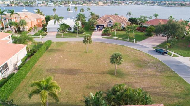 Rubia Cir, Apollo Beach, FL 33572 (MLS #T3211803) :: Bustamante Real Estate