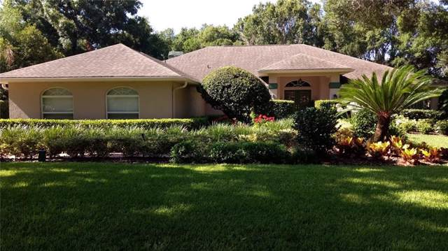 1435 Hounds Hollow Court, Lutz, FL 33549 (MLS #T3211850) :: 54 Realty
