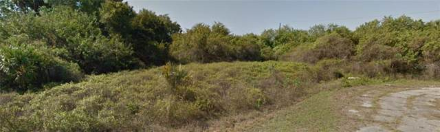 Hayward Avenue, North Port, FL 34288 (MLS #T3211876) :: Team Pepka