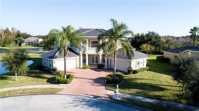 19133 Harborbridge Lane, Lutz, FL 33558 (MLS #T3211962) :: Bridge Realty Group