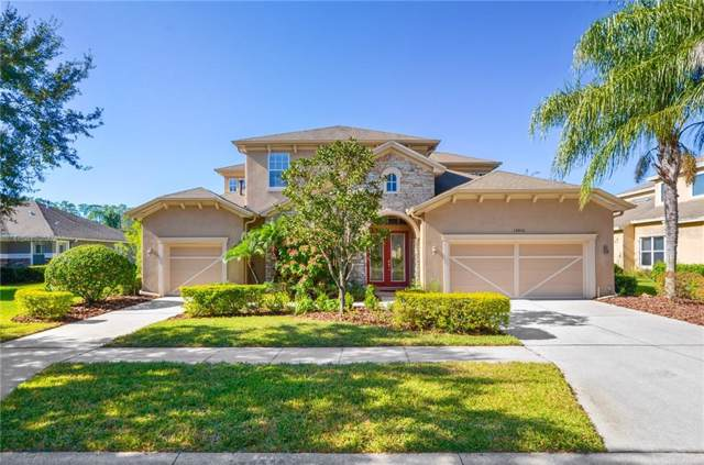 14806 Tudor Chase Drive, Tampa, FL 33626 (MLS #T3211984) :: Griffin Group