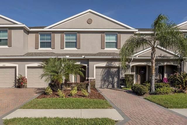 3945 Claybrook Drive, Wesley Chapel, FL 33544 (MLS #T3212018) :: Cartwright Realty
