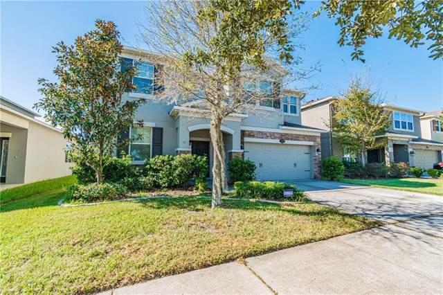 10608 Pictorial Park Drive, Tampa, FL 33647 (MLS #T3212060) :: Bustamante Real Estate