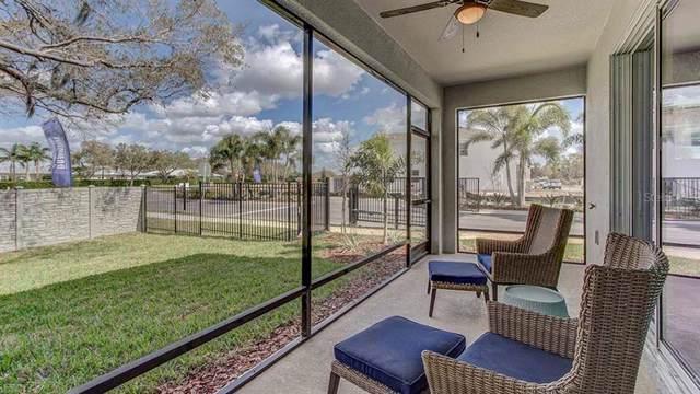 8689 Daydream Street, Sarasota, FL 34238 (MLS #T3212108) :: Zarghami Group