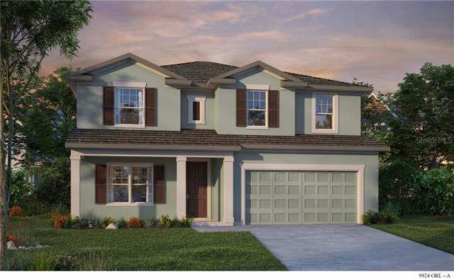 13303 Blossom Valley Drive, Clermont, FL 34711 (MLS #T3212186) :: Team Bohannon Keller Williams, Tampa Properties