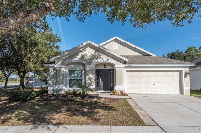 10502 Egret Haven Lane, Riverview, FL 33578 (MLS #T3212188) :: Cartwright Realty