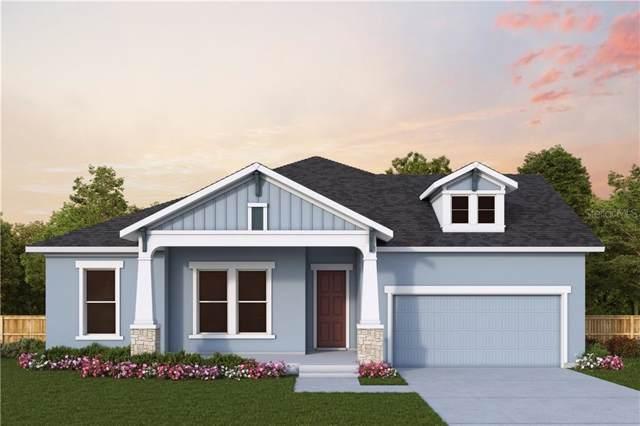 16677 Vibrato Lane, Land O Lakes, FL 34638 (MLS #T3212358) :: Team Bohannon Keller Williams, Tampa Properties