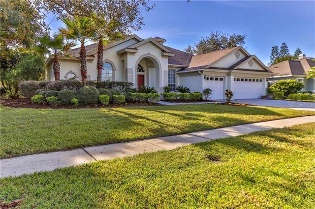 5502 Garden Arbor Drive, Lutz, FL 33558 (MLS #T3212497) :: The Duncan Duo Team
