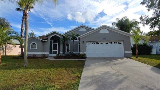 1803 Mapleleaf Boulevard, Oldsmar, FL 34677 (MLS #T3212567) :: Lovitch Realty Group, LLC