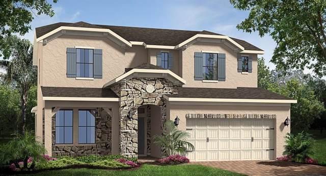 7019 Oxbow Road, Minneola, FL 34715 (MLS #T3212588) :: 54 Realty