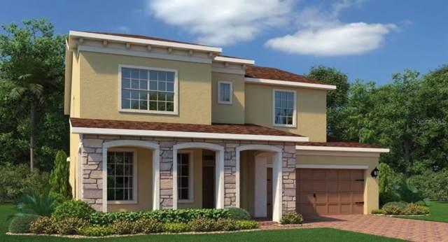 792 Boxelder Avenue, Minneola, FL 34715 (MLS #T3212615) :: 54 Realty