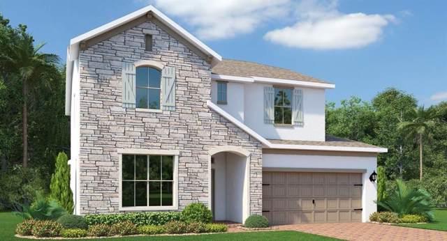 807 Boxelder Avenue, Minneola, FL 34715 (MLS #T3212633) :: 54 Realty