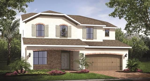 880 Boxelder Avenue, Minneola, FL 34715 (MLS #T3212639) :: 54 Realty