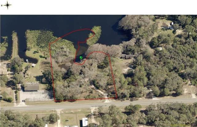 5765 N Carl G Rose Highway, Hernando, FL 34442 (MLS #T3212640) :: The Lersch Group