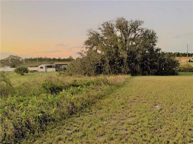 Libby Alico Road, Babson Park, FL 33827 (MLS #T3212648) :: EXIT King Realty
