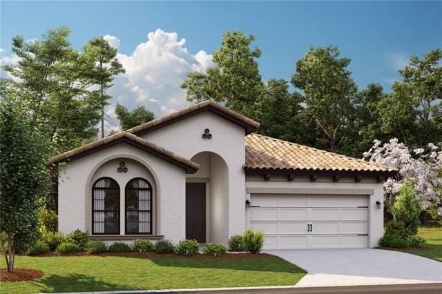 11215 Fish Eagle Drive, Riverview, FL 33569 (MLS #T3212715) :: Delgado Home Team at Keller Williams