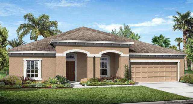 3563 Vega Creek Drive, Saint Cloud, FL 34772 (MLS #T3212764) :: 54 Realty