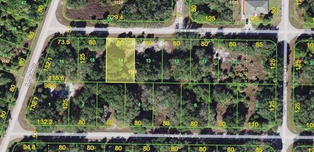 16267 Marceline Avenue, Port Charlotte, FL 33954 (MLS #T3212787) :: The Light Team