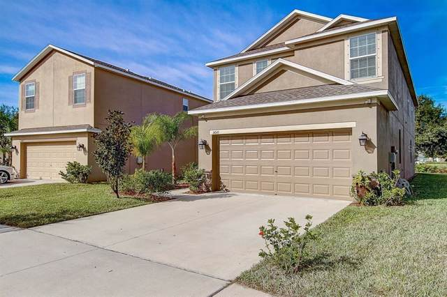 14045 Lugano Court, Hudson, FL 34669 (MLS #T3212865) :: Cartwright Realty