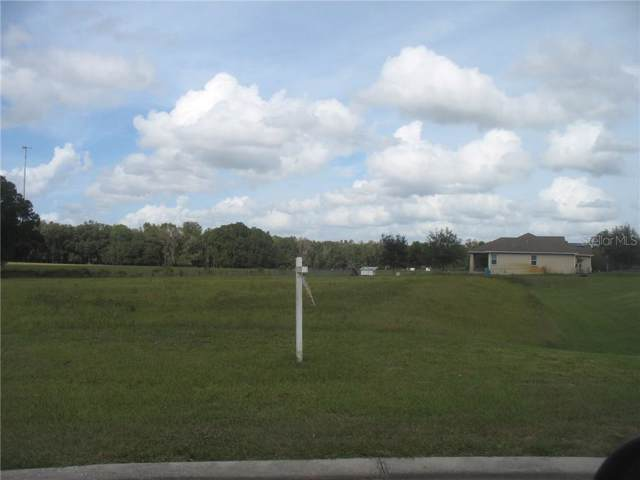 12706 Mcintosh Groves Lane, Thonotosassa, FL 33592 (MLS #T3212968) :: Team Borham at Keller Williams Realty